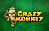Crazy Monkey новые игры