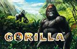 Gorilla слот онлайн