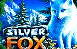 Silver Fox слот онлайн